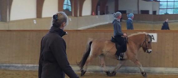 Petra Köcke im Unterricht : Reiten in Balance - pferdegerechte Ausbildung nach klassischen Grundsätzen