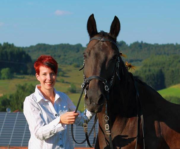 Stefanie Seidl - Ganzheitliches Pferdetraining - PferdeTermine.de