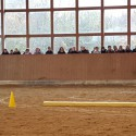 Longenkurs - Wege zum Pferd - Babette Teschen in Bargteheide, Hof Ohana