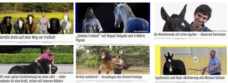 International bekannte Pferdetrainer - tolle Reitkurse