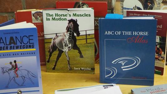 Buchempfehlungen zum Thema Reiten in Balance, Biomechanik und Anatomie des Reitpferdes