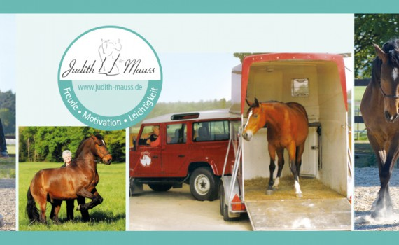 Kurs Trainer Horsemanship