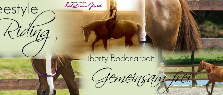 Lebe dein Pferd Nicole Friedrich Liberty Bodenarbeit Freestyle Riding gemeinsam frei