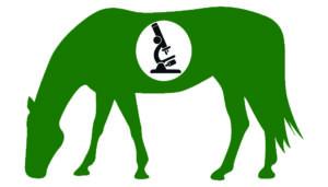 Kotuntersuchung Pferd Wurmkur