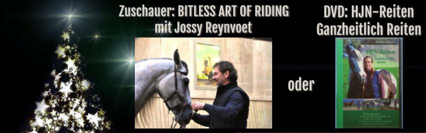 Adventskalender Gewinn Pferd Reiten Kurs 2016