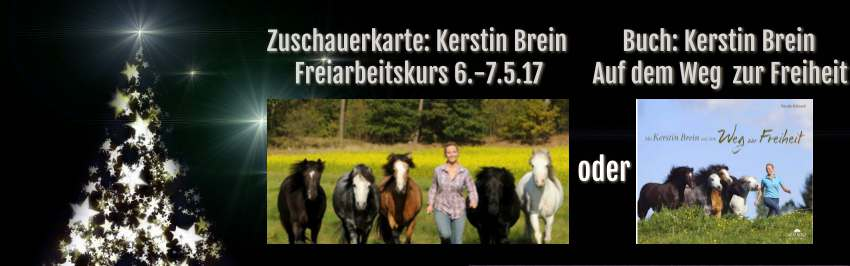 Gewinnspiel Adventskalender Pferd 2016