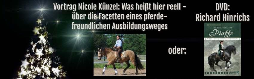 Gewinnspiel Adventskalender Pferdefreunde 2016