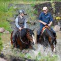 Sicherheit Freiarbeit Kurs Horsemanship