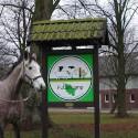 Reitkurs Kurs Pferd Reiten 2017 Schleswig-Holstein
