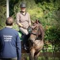 Dressurlehrgang sitzschulung em Franklin meyners 2017 Sachsen Kurs reiten