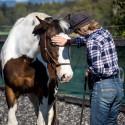 Horsemanship Kurs Österreich 2017