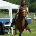 Horsemanship Kurs 2017