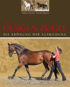 Kurs Langzügel Pferd Bodenarbeit