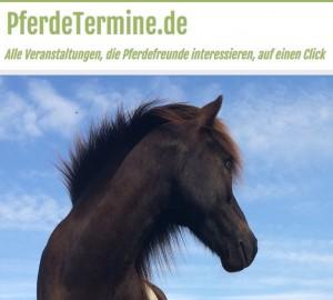 Suche nach Pferdeveranstaltungen in deiner Nähe