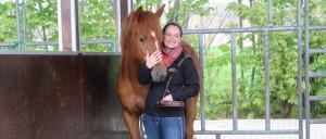 Mustang Makeover 2017 - 90 Tage mit einem Wildpferd