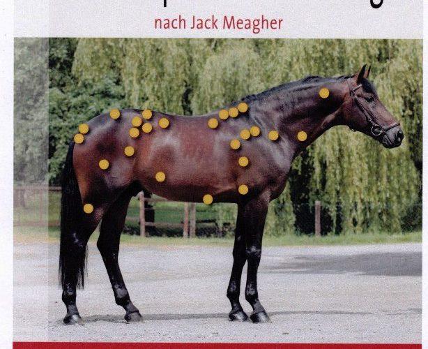 Magazin für klassische Reitkunst NEU Buch Limitierte Auflage Best of Piaffe