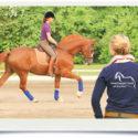 OsteoConcept Coach - Weiterbildung für Trainer im Pferdesport (nach Absprache auch osteopathische Pferdetherapeuten nach Welter-Böller)