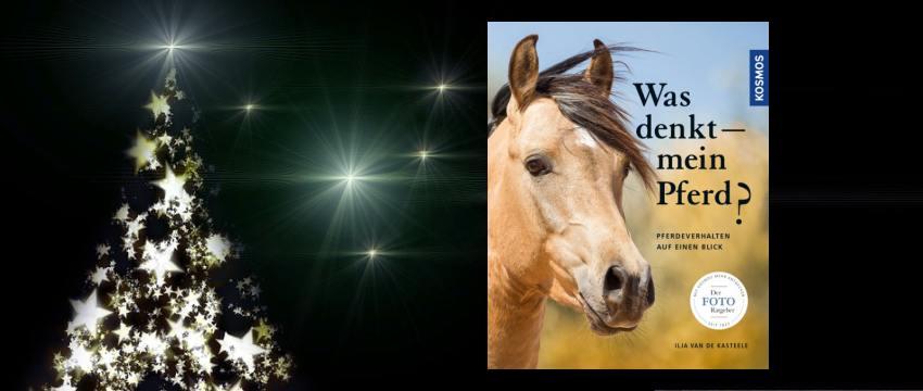 """Adventskalender 2017 – Gewinne das Buch """"Was denkt mein Pferd?"""""""