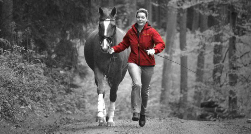 Ridersmind - Angstfrei Reiten mit Dr. Birgit Harenberg
