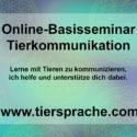 Begleitetes Online-Seminar Tierkommunikation erlernen für Euro 130.--