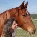 Mona Schäfer - Pferde-Menschen-Dialoge