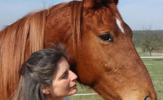 (Hoch)sensibilität bei Mensch und Pferd