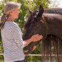 Aufschulung vom Pferdephysiotherapeuten zum Pferdeosteopathen