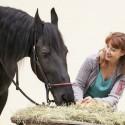 Pferdeernährungsberater Online-Ausbildung