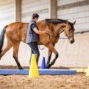 Muskelaufbau und Balance mit Equikinetic, Dual-Aktivierung mit Geitner Trainerin Alexandra Struzyna