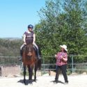 Feine Hilfen Rider Ability(c) Reitkurs mit Linsay Gardner