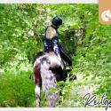 Intensiv-Reitcoaching | Aktivurlaub mit deinem Pferd bei Jutta Beckmann