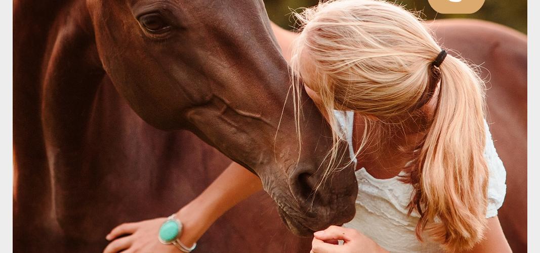 Intensivkurs für AndersPferdeMenschen mit Reitgeist