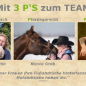 Herzenssache Mein Pferd und ich