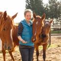 Bootcamp: Furchtlos am Pferd