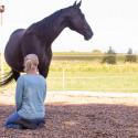 Achtsamkeitsabend mit Pferdestärken