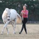 Equibalance® - Natürliche Gymnastizierung am Boden und im Sattel - Feine Hilfen bewußt und pferdeverständlich einsetzen