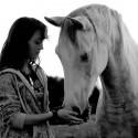 Fragen & Antworten rund um Horsemanship