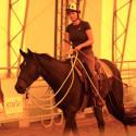 Horsenalities in der Praxis - Pferdepersönlichkeiten im Sattel/ Freestyle • Parelli Level 2 und höher