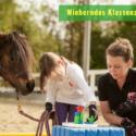 Wieherndes Klassenzimmer! KKP Konzentrationstrainer mit Pferd! ONLINE-Fortbildung
